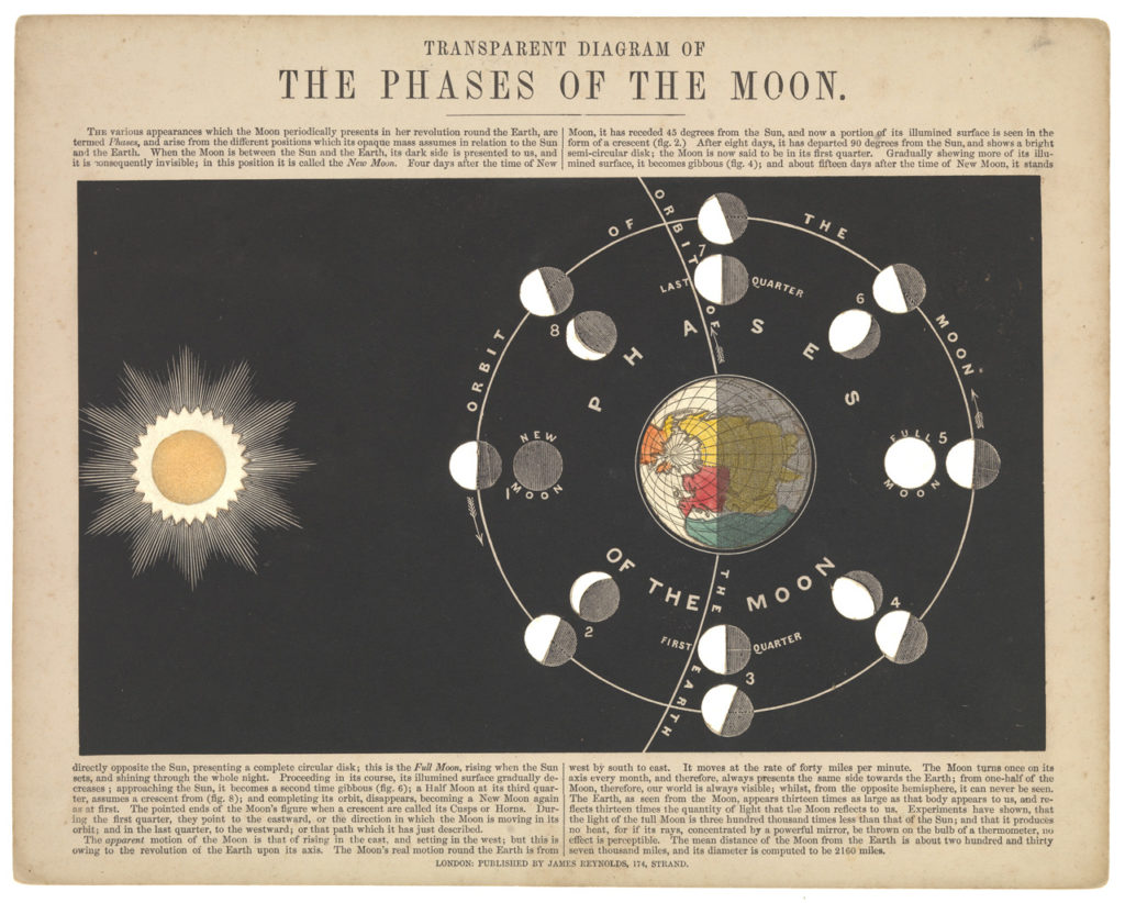 illustration showing the phases of the moon
