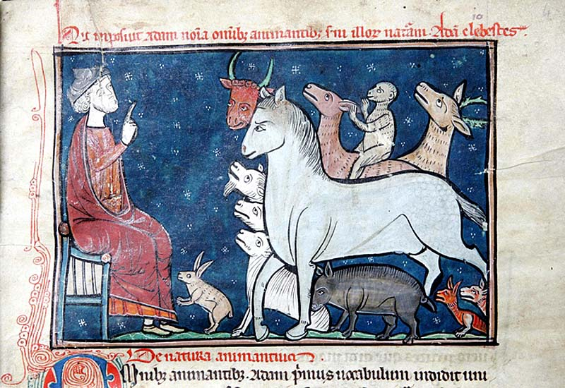 a medieval manuscript depicting a man with various animals
