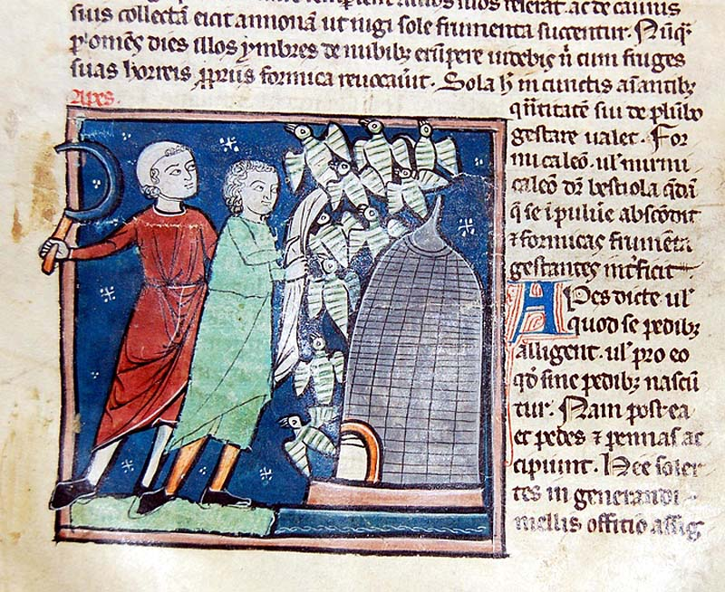 a medieval manuscript showing two men next to a beehive