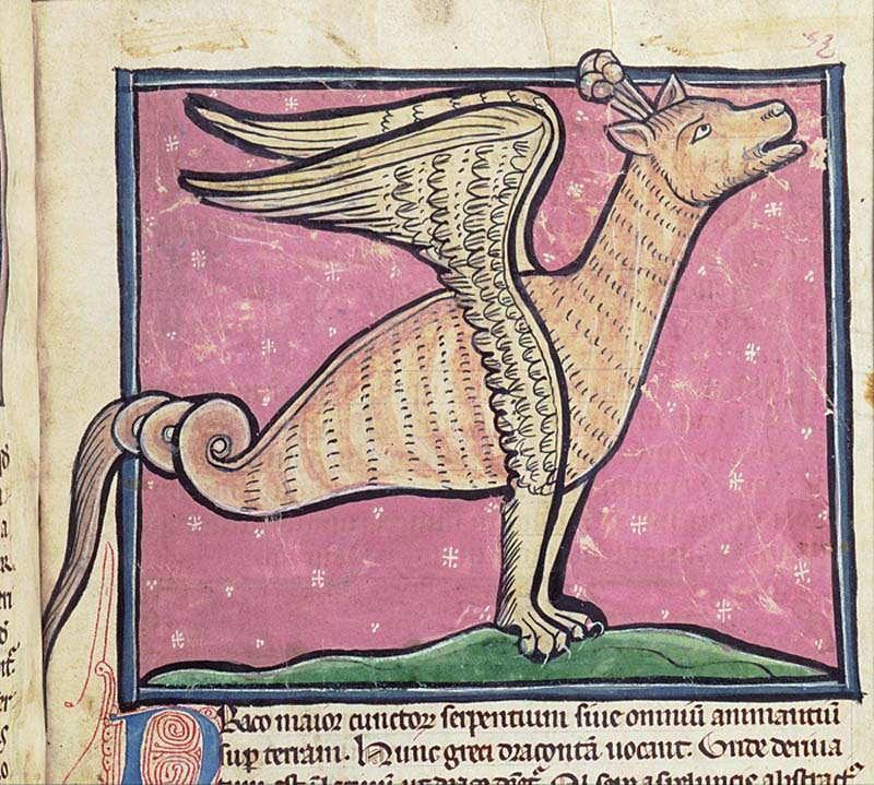 a medieval manuscript with a winged creature on it