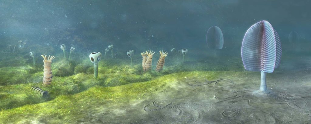 a reconstruction drawing of a sea floor with traces of exotic creatures