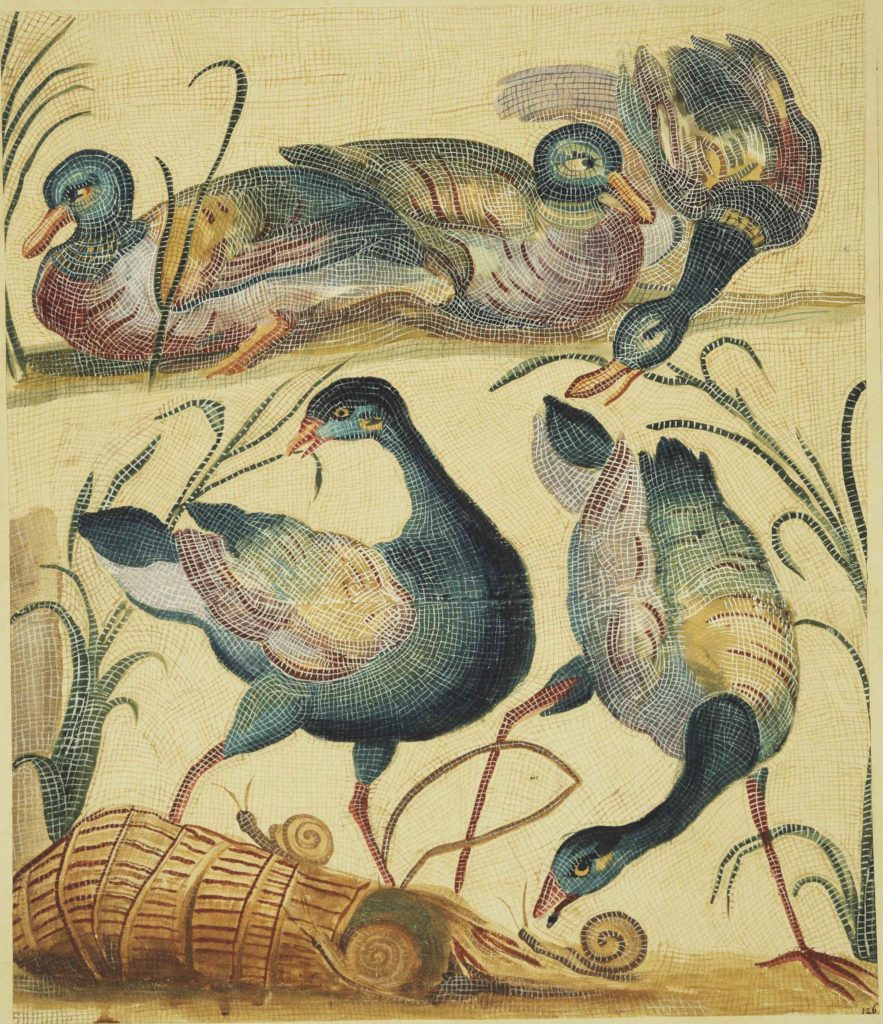 a mosaic depicting three ducks and two geese