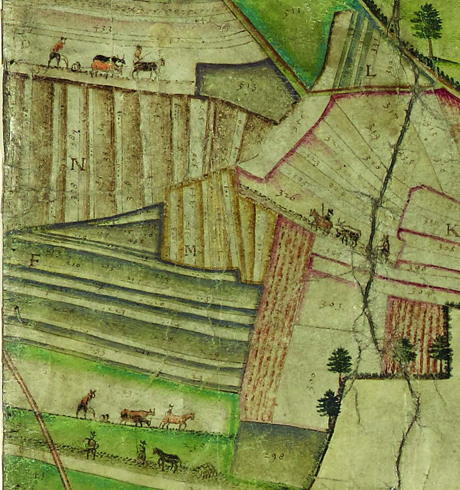 a detail of a map showing medieval field systems and other details