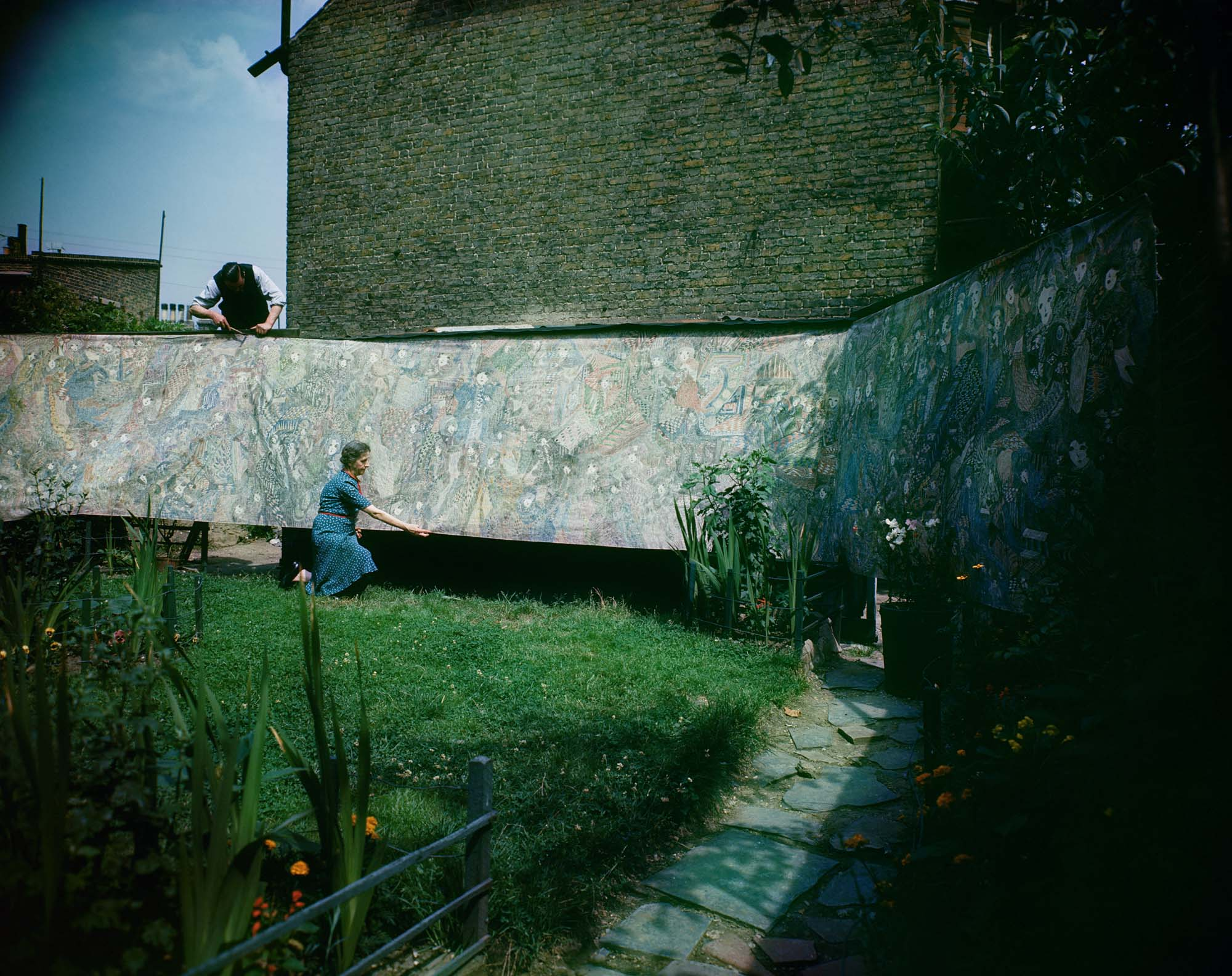 a colour photo of a woman araanging a long roll with a drawing across a wall of a garden