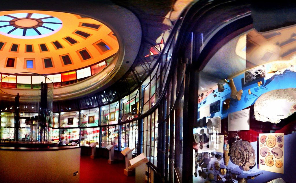 Inside the Rotunda Museum, Scarborough