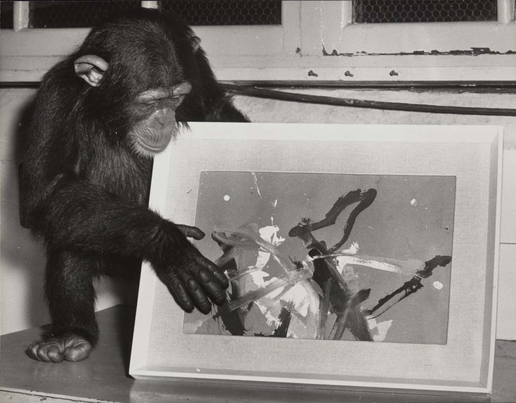 a black and white photo of a chimp making an abstract painting