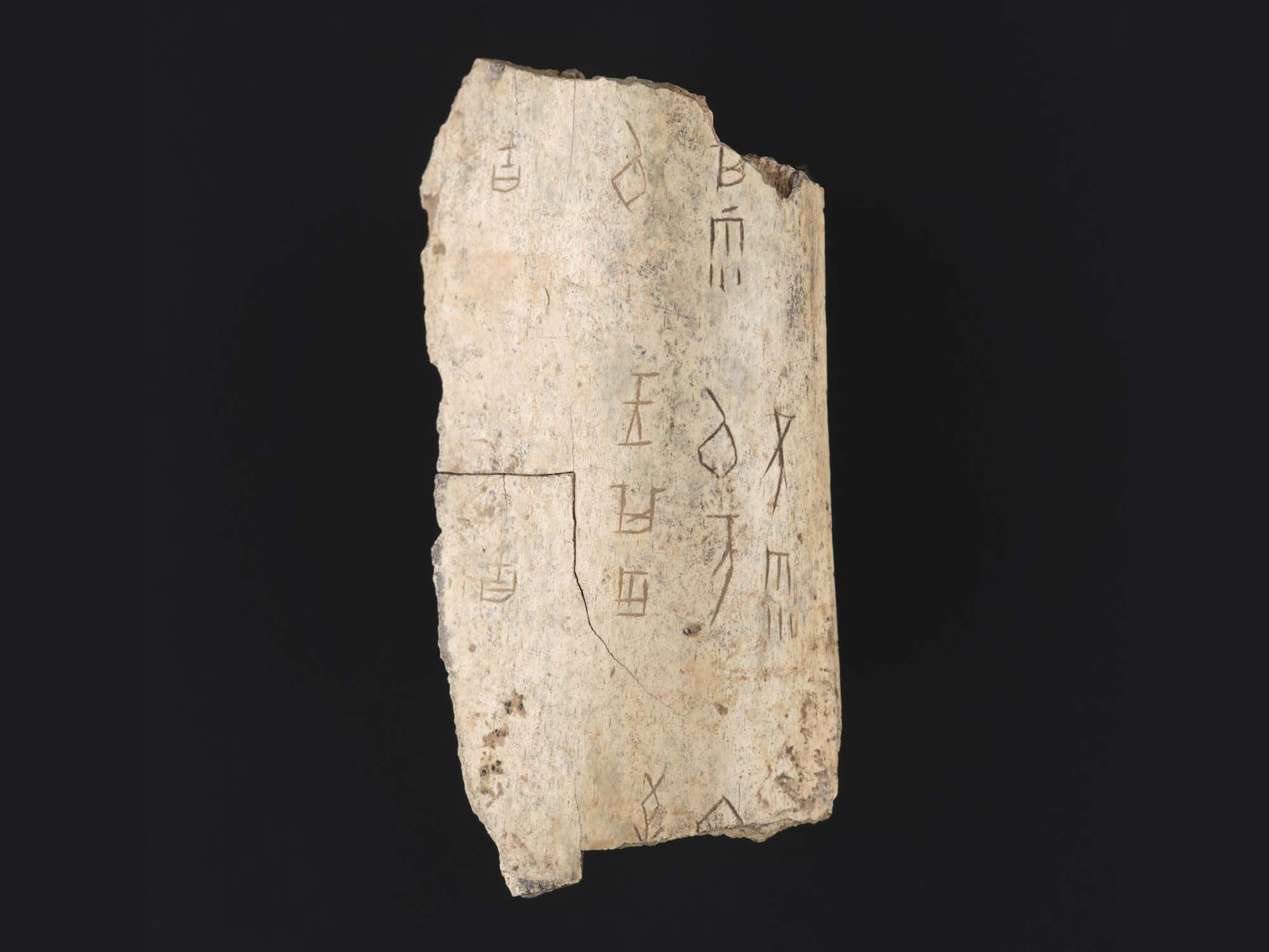 a photo of a piece of animal bone with Chinese writing on it