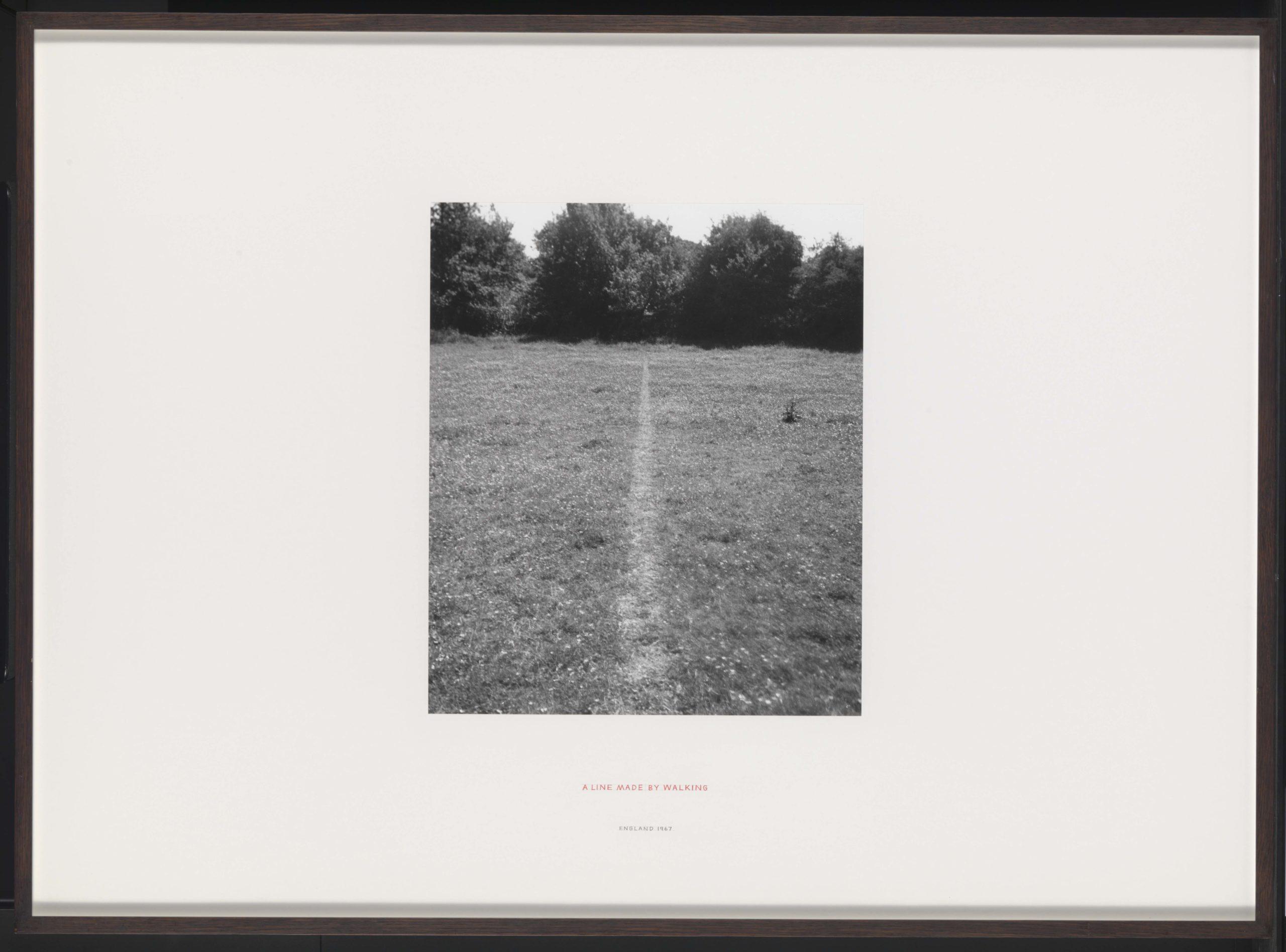 a photo of a line running through a field