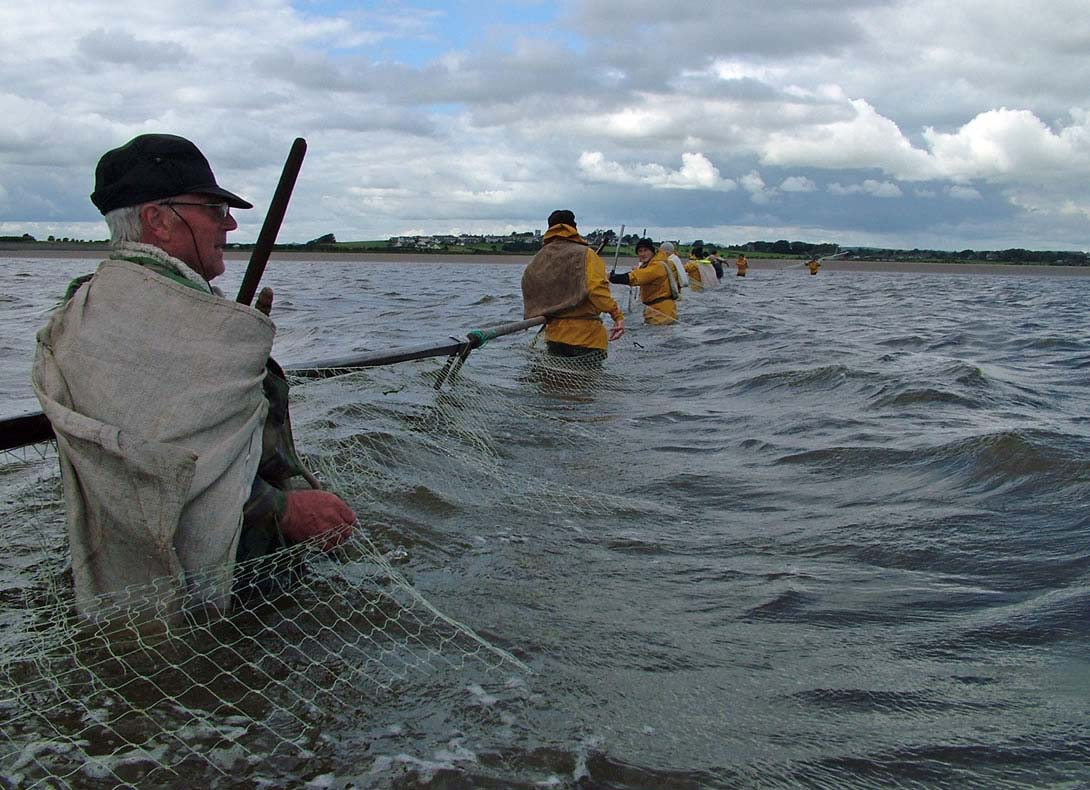 a photo of a group of men standing in a river holding a pole with a net attached to it