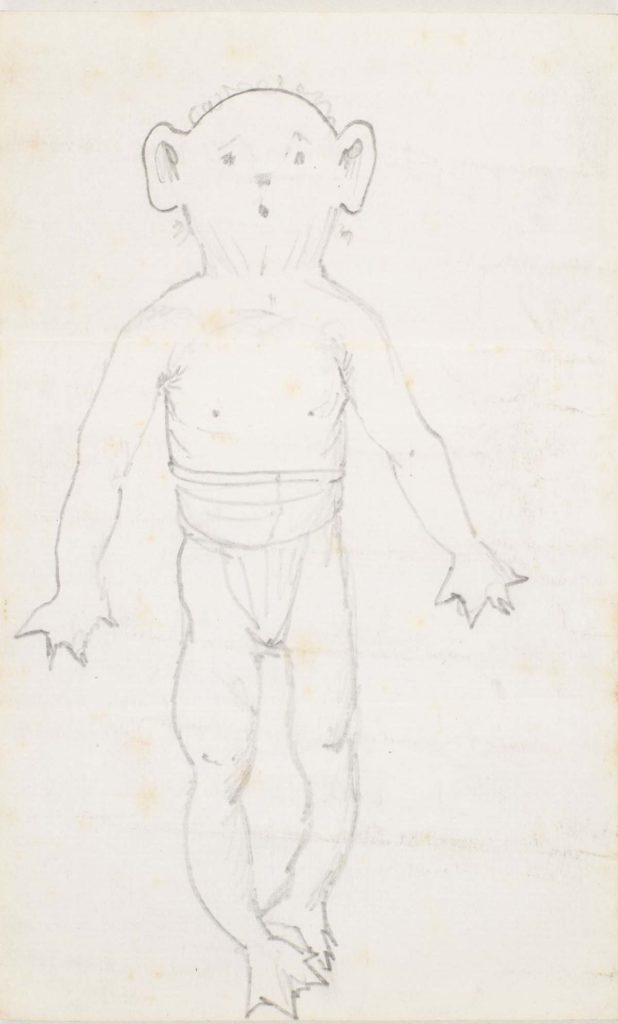 a ketch of a goblin like creature wearing trunks