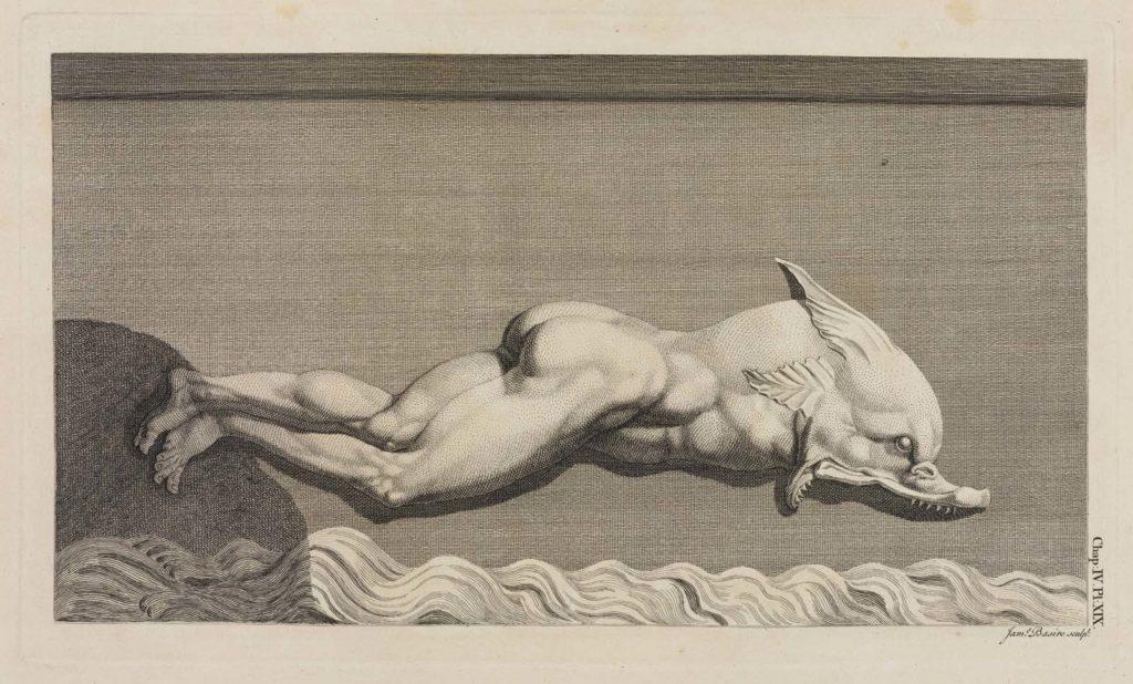 a drawing a statue of a half man half fish figure