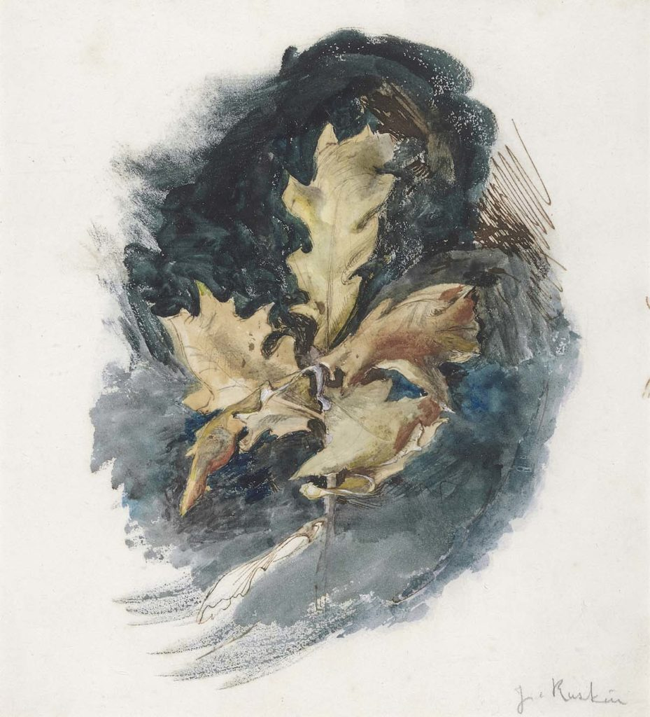 a watercolur sketch of a browned oakleaf