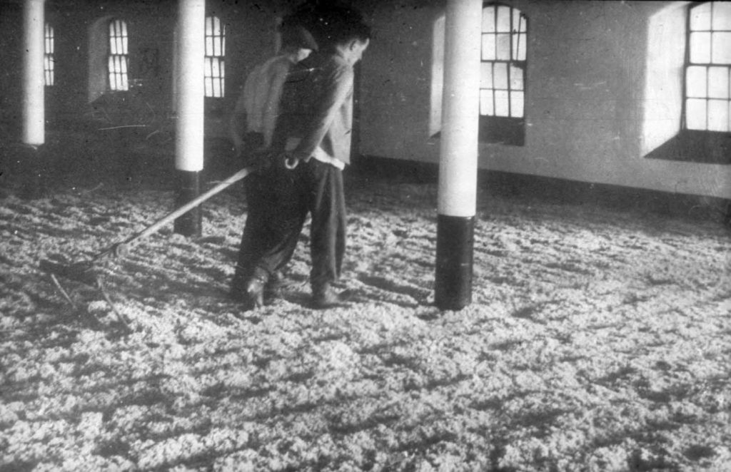 a photo of two people combing maltings