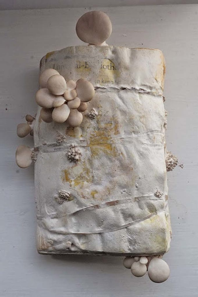 a book with mushrooms growing out of it