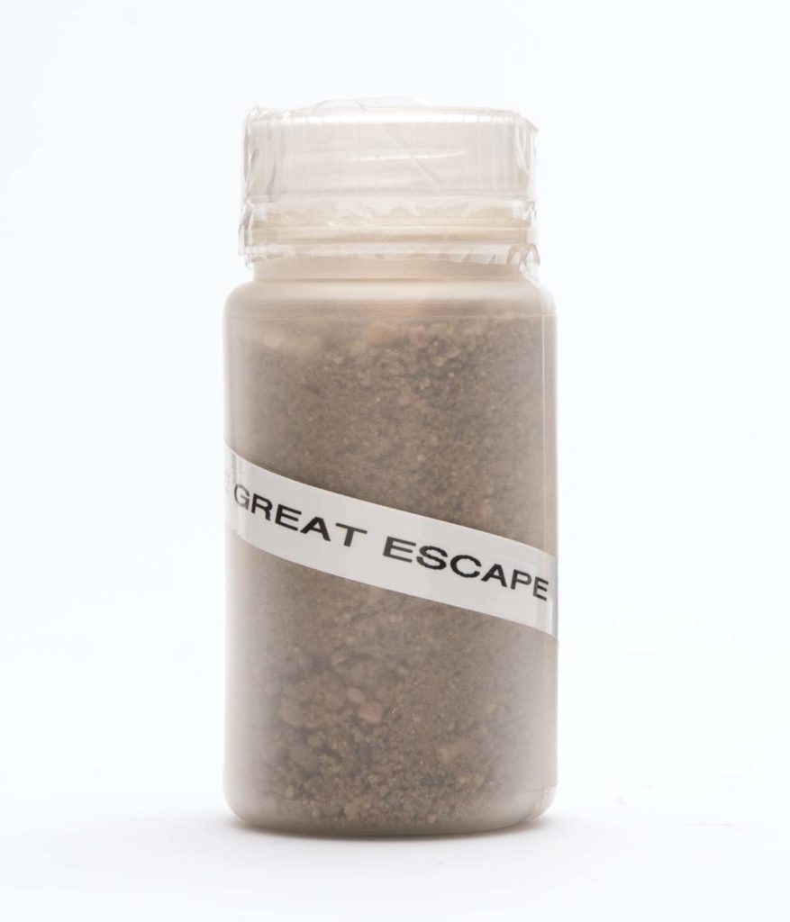 a vial of grit with a label saying Great Escape