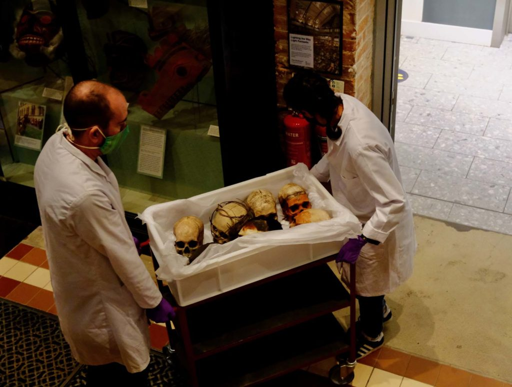 photo of two people moving a box of skulls across a museum