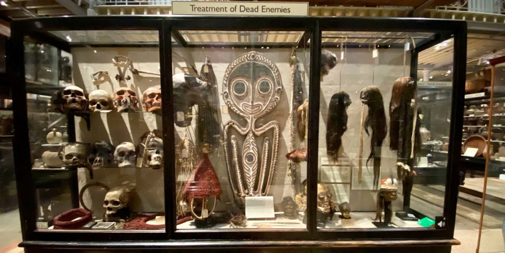 a display case filled with skulls and shrunken heads