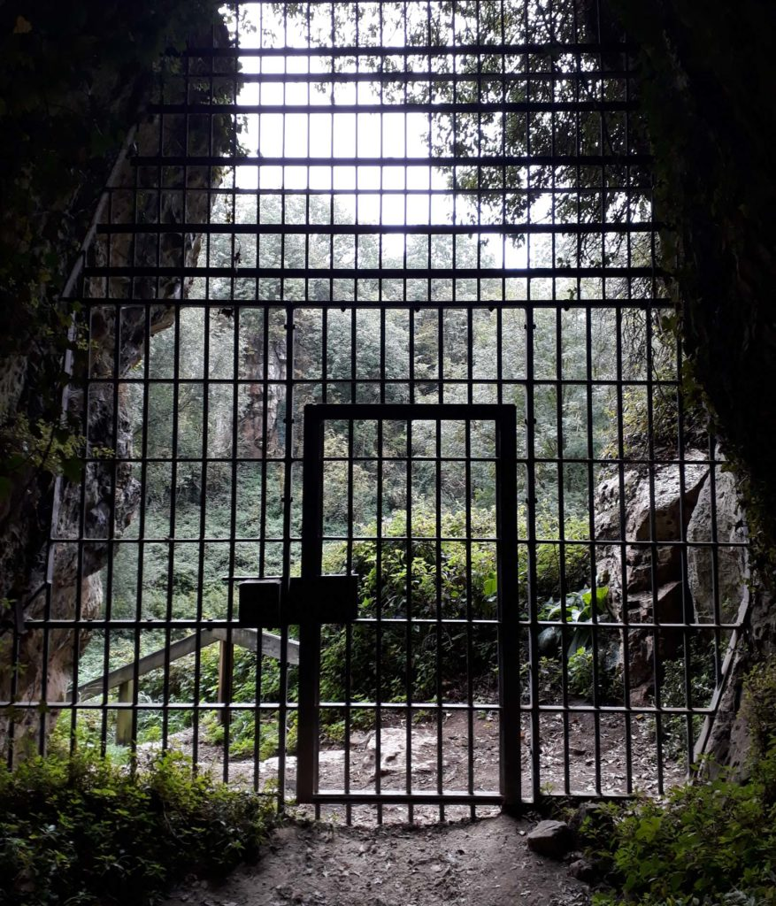 a photo of iron bars and gate at the entrance to a cave
