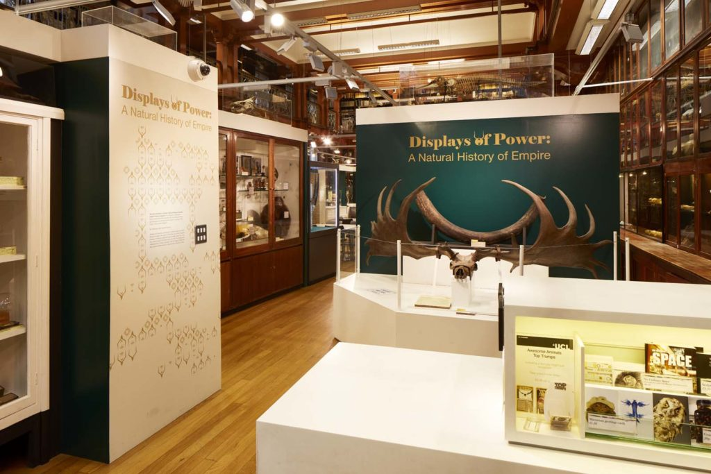 photo of an entrance to a museum exhibition with natural history display cabinets