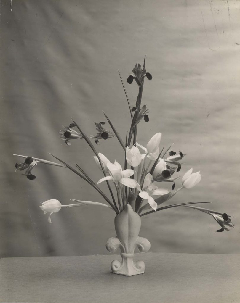 black and white photo of a spray of flowers in a fleur de lis vase