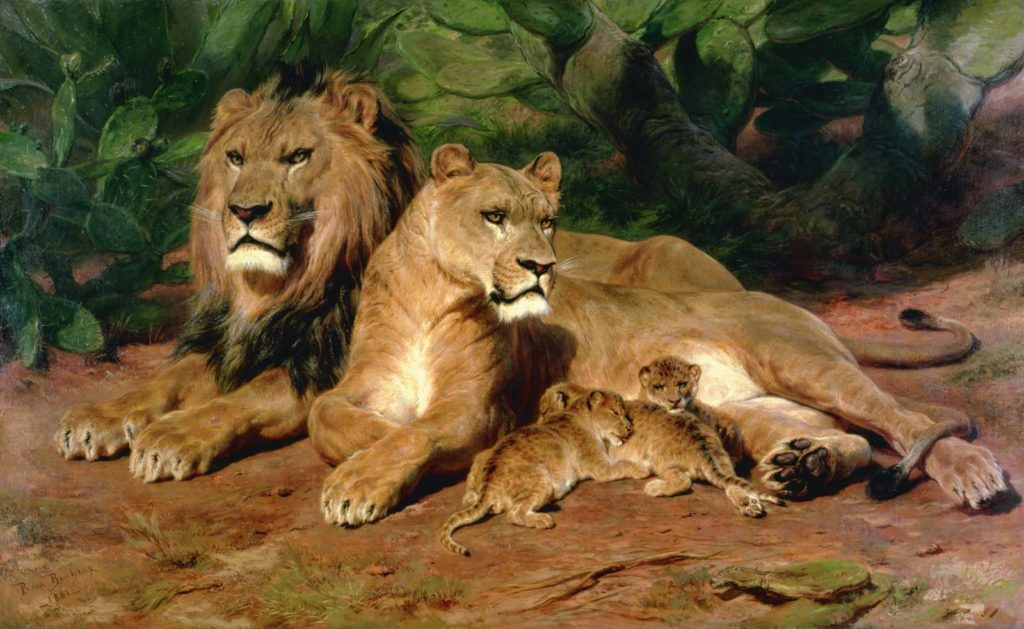 painting of a family of lions