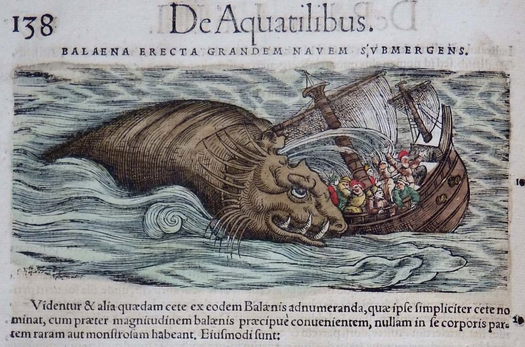 a medieval illustration of a sea monster attacking a ship