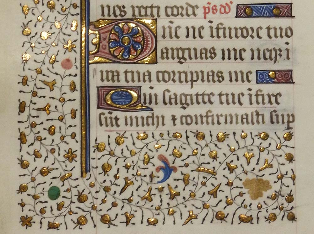 an illuminated manuscript page with floral designs
