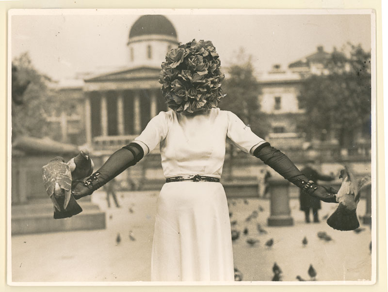 woman in Trafalgar Square wearing white dress and holding pigeons on her outstretched arms. Her head is completely covered in roses