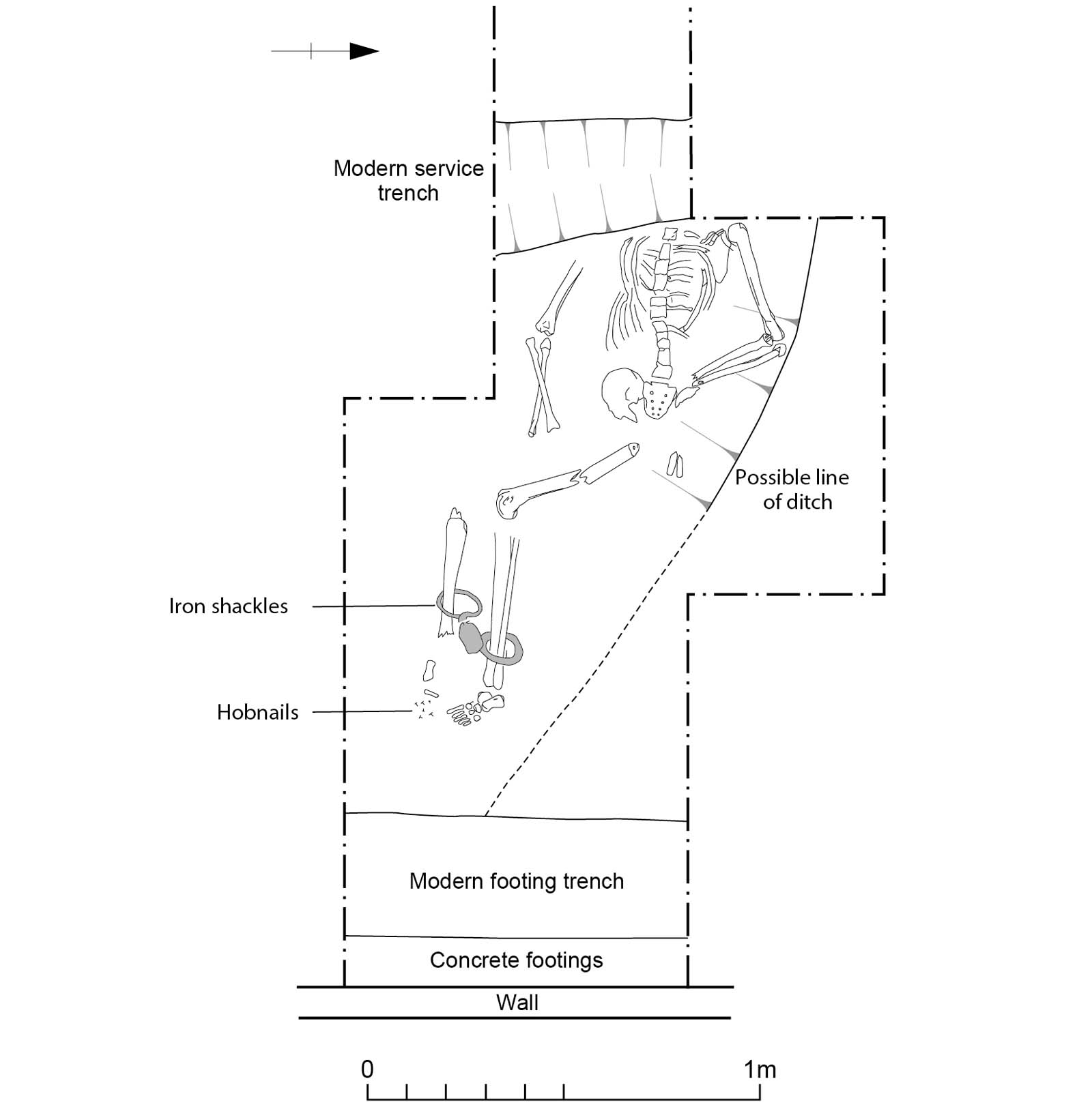 diagram showing the position of a skeleton in a grave