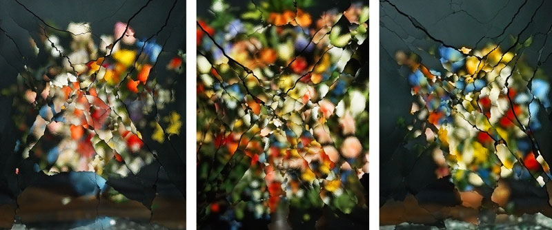 triptych of flower arrangement obscured by broken and patterned glass