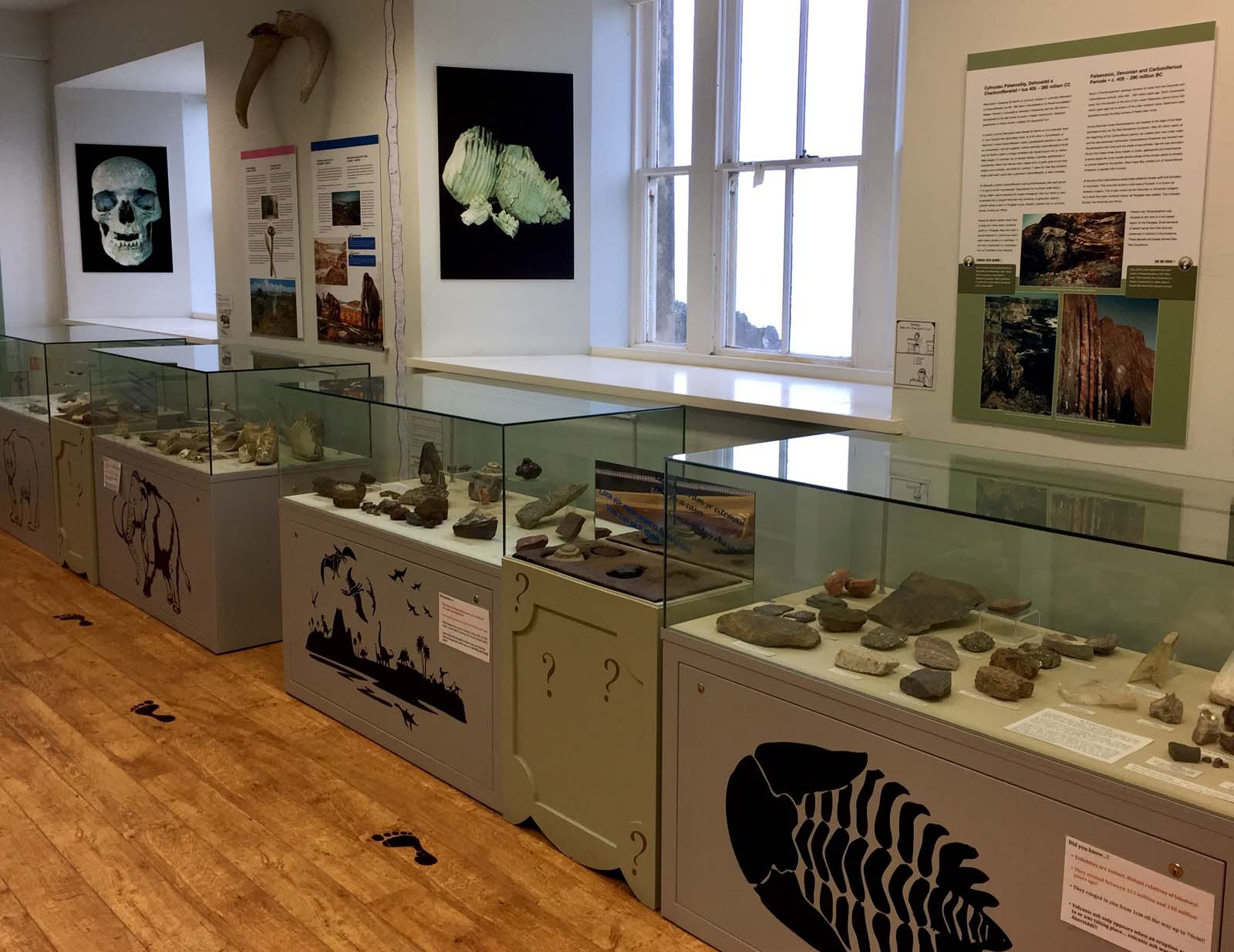 photo of a museum gallery with display cases
