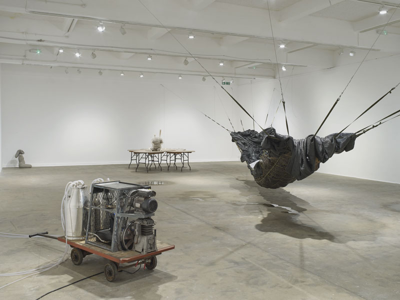 a selection of contemporary sculptural artworks by Yu Ji in gallery space