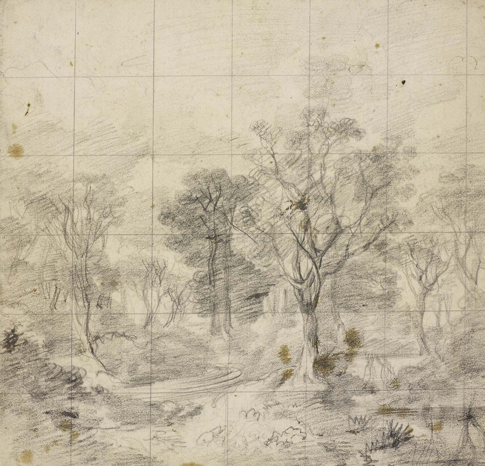 sketch of trees and woodland with a series of squares overlaying the top