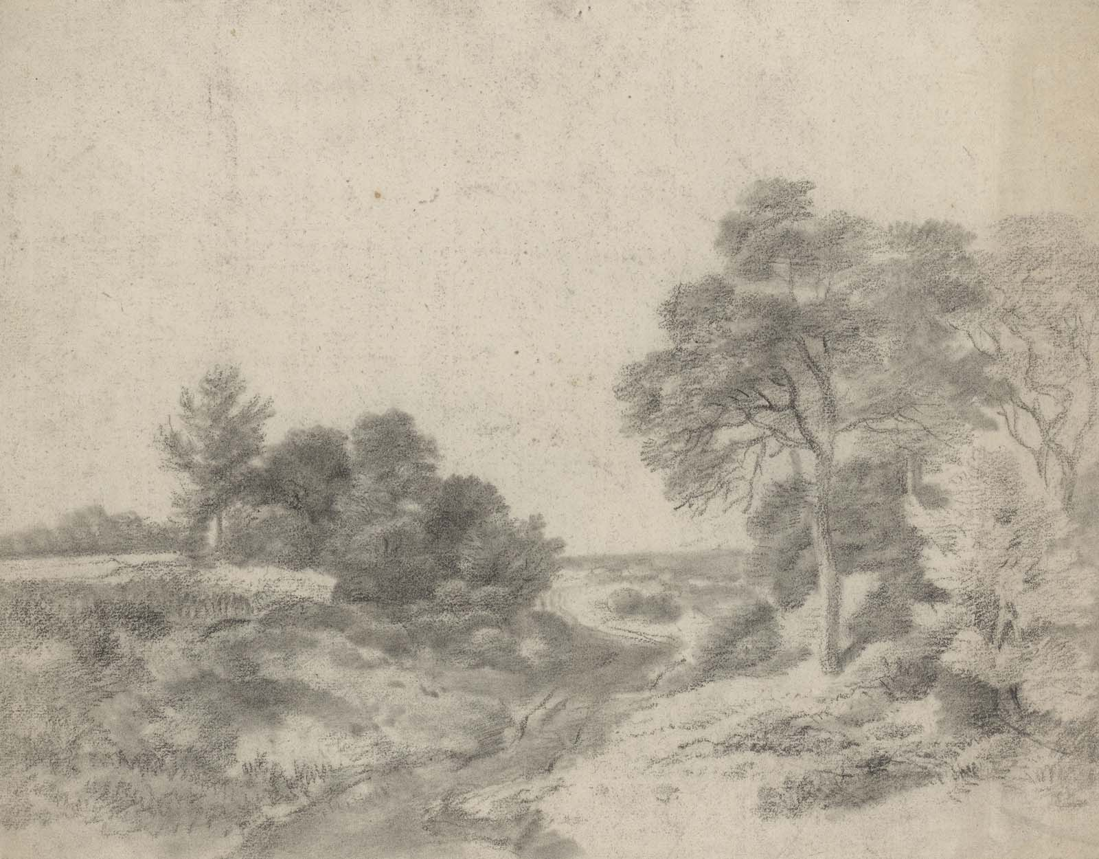 sketch of trees and meadows