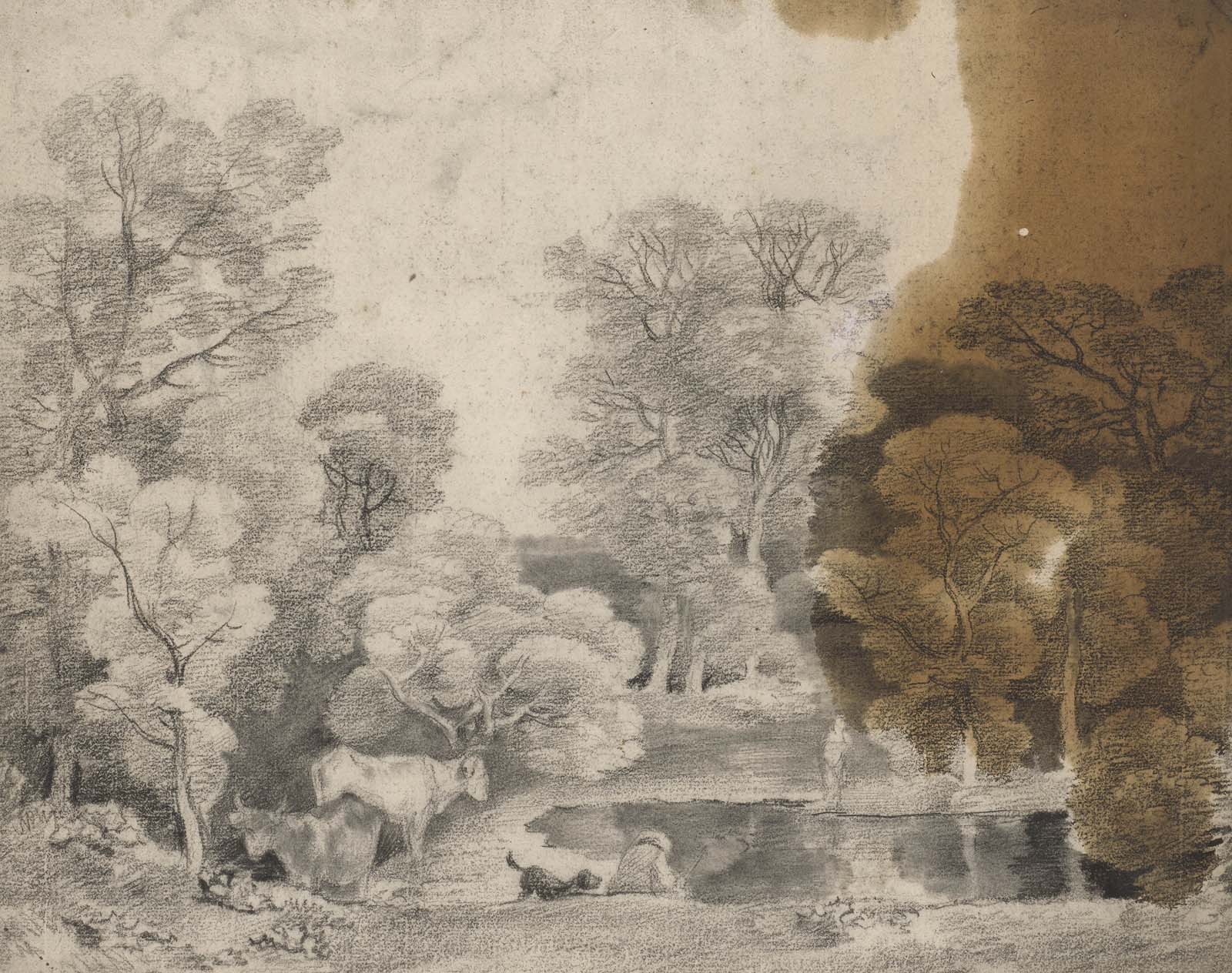 sketch of a woodland scene with lake featuring a brown oil stain to the right hand side